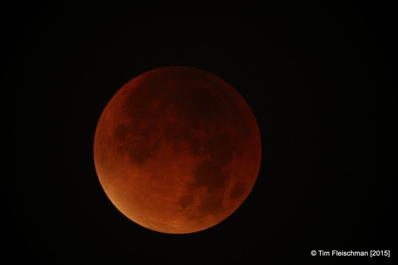 The blood red moon was seen by many in the UK as the skies were clear in many areas.
